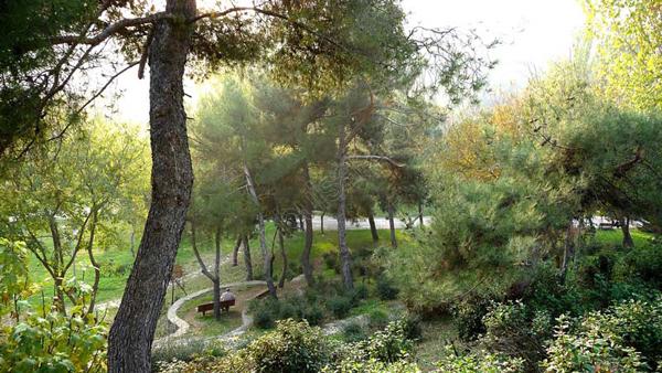 پارک ماچکا